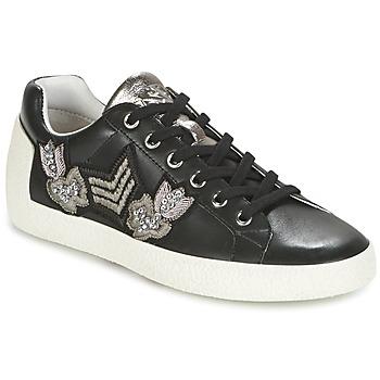 Topánky Ženy Nízke tenisky Ash NAK-AR Čierna