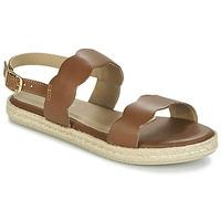 Topánky Ženy Sandále Betty London IKARO Hnedá