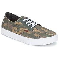 Topánky Muži Skate obuv Globe Motley LYT Zelená