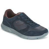 Topánky Muži Nízke tenisky Geox U DAMIAN Modrá