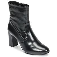 Topánky Ženy Čižmičky Steve Madden AVENUE Čierna