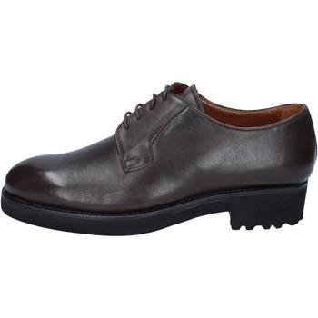 Topánky Muži Derbie Alexander classiche t. moro pelle BY450 Marrone