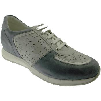 Topánky Ženy Nízke tenisky Calzaturificio Loren LOC3795bl blu