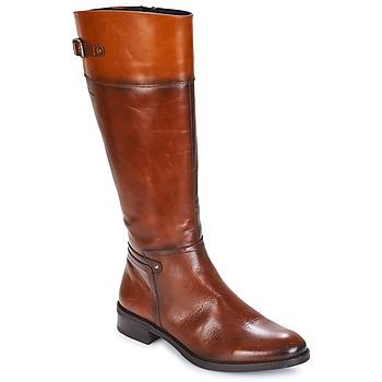Topánky Ženy Čižmy do mesta Dorking TIERRA Hnedá