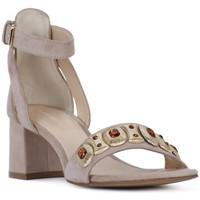 Topánky Ženy Sandále Elvio Zanon SANDALO Rosa