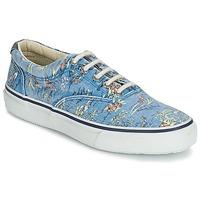Topánky Muži Nízke tenisky Sperry Top-Sider STRIPER HAWAIIAN Modrá