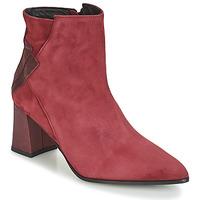 Topánky Ženy Čižmičky Elizabeth Stuart DHEXTER Bordová