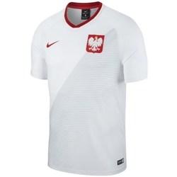 Oblečenie Muži Tričká s krátkym rukávom Nike WC 2018 Home Breathe Top Biela, Sivá