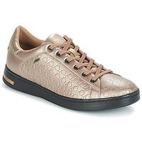 Topánky Ženy Nízke tenisky Geox D JAYSEN Béžová