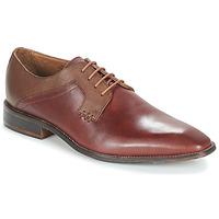 Topánky Muži Derbie André CRYO Hnedá