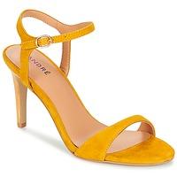 Topánky Ženy Sandále André SAXO Žltá