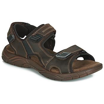 Topánky Muži Sandále André MIAMI Hnedá