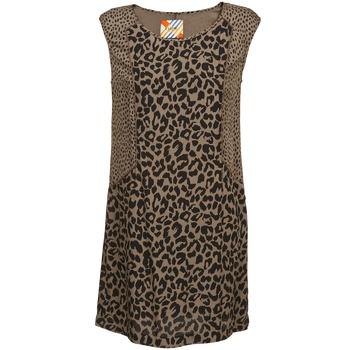 Oblečenie Ženy Krátke šaty Chipie RITA Béžová