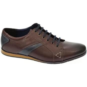 Topánky Muži Nízka obuv do mesta Iguana Pánske hnedé poltopánky CALAPS hnedá