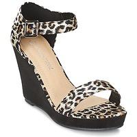 Topánky Ženy Sandále Moony Mood IVONGA Čierna / Leopard