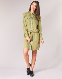 Oblečenie Ženy Krátke šaty Scotch & Soda JULIENAS Kaki