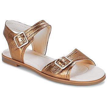Topánky Ženy Sandále Clarks Bay Primrose Bronzová / Metalická