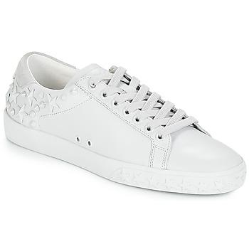 Topánky Ženy Nízke tenisky Ash DAZED Biela