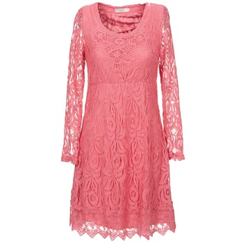 Oblečenie Ženy Krátke šaty Cream ANNEMON LACE Ružová