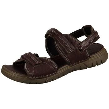 Topánky Muži Sandále Josef Seibel Jim Hnedá