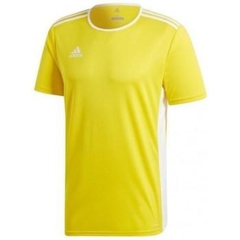 Oblečenie Muži Tričká s krátkym rukávom adidas Originals Entrada 18 Jsy Žltá