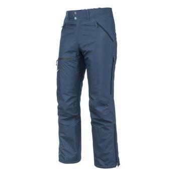 Oblečenie Muži Nohavice Salewa Sesvenna Ws Lrr M Pnt 25820-8671 blue